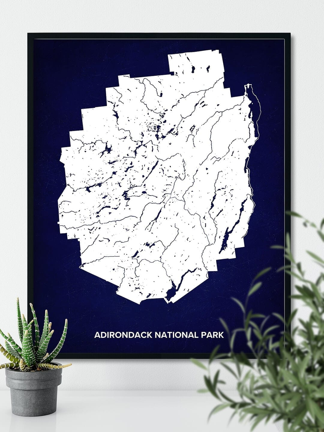 Adirondack National Park Map Poster hanging on the bright wall next to some indoor plants