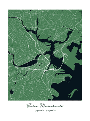 Positiveprints.com BOSTON CITY MAP PRINT