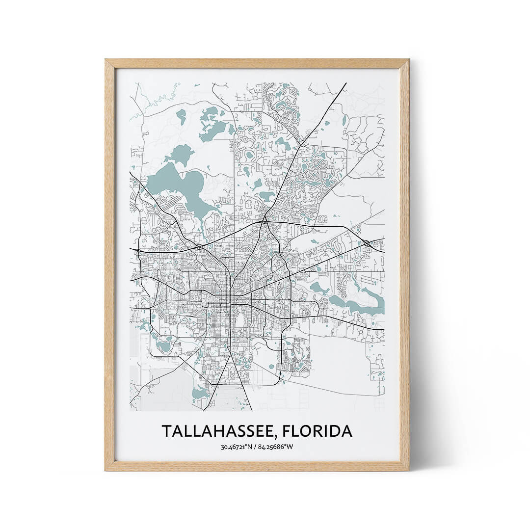 Tallahassee city map poster