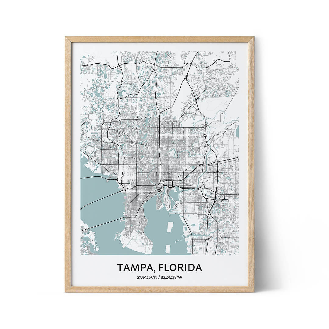 Tampa city map poster