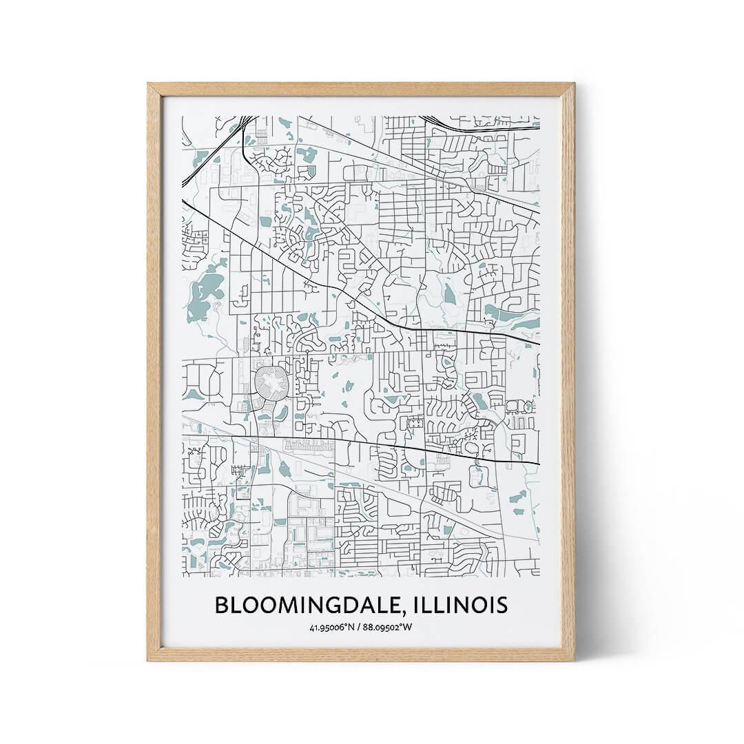 Bloomingdale city map poster