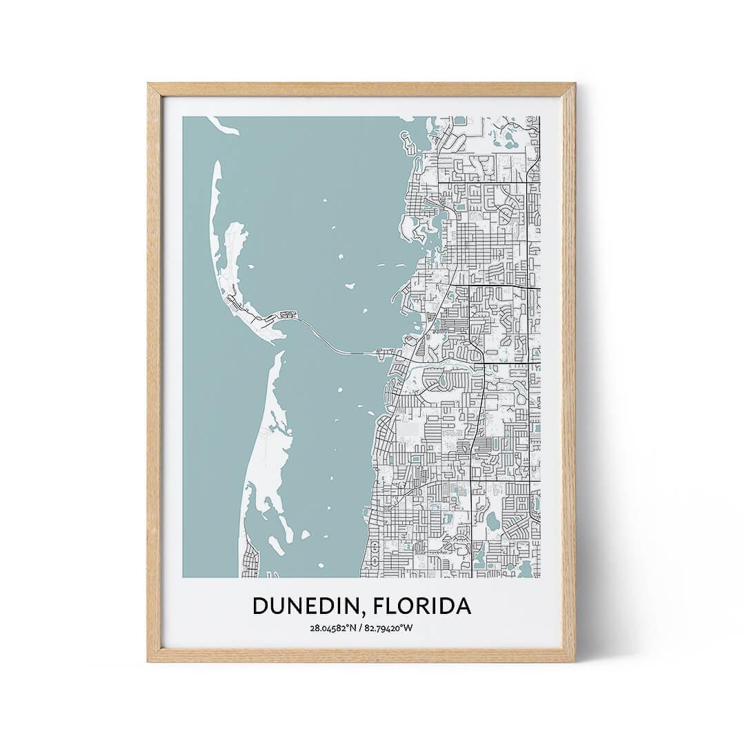 Dunedin city map poster