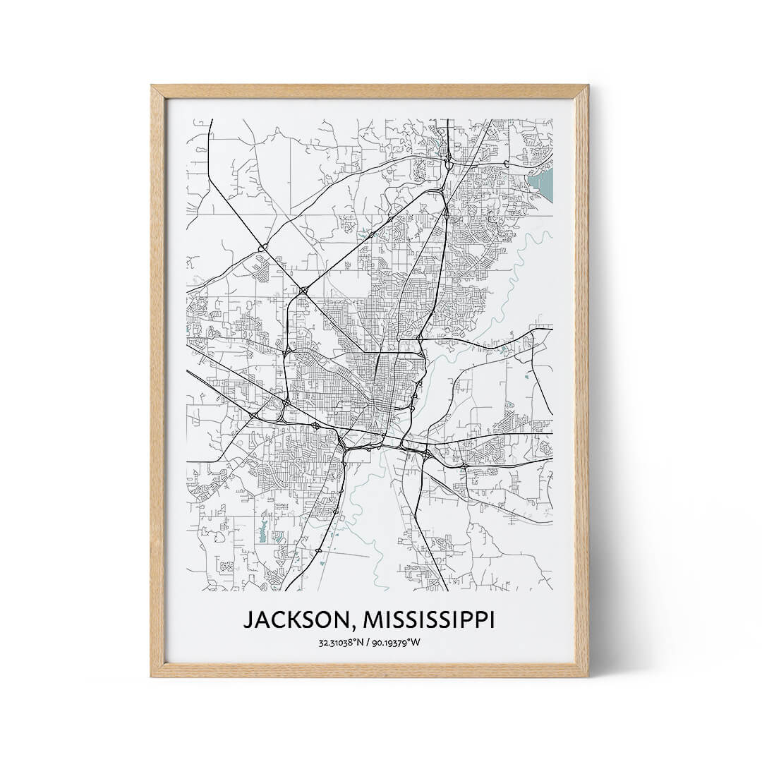 Jackson city map poaster