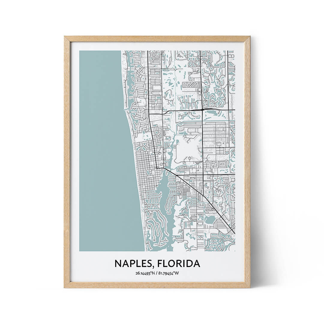 Naples city map poster