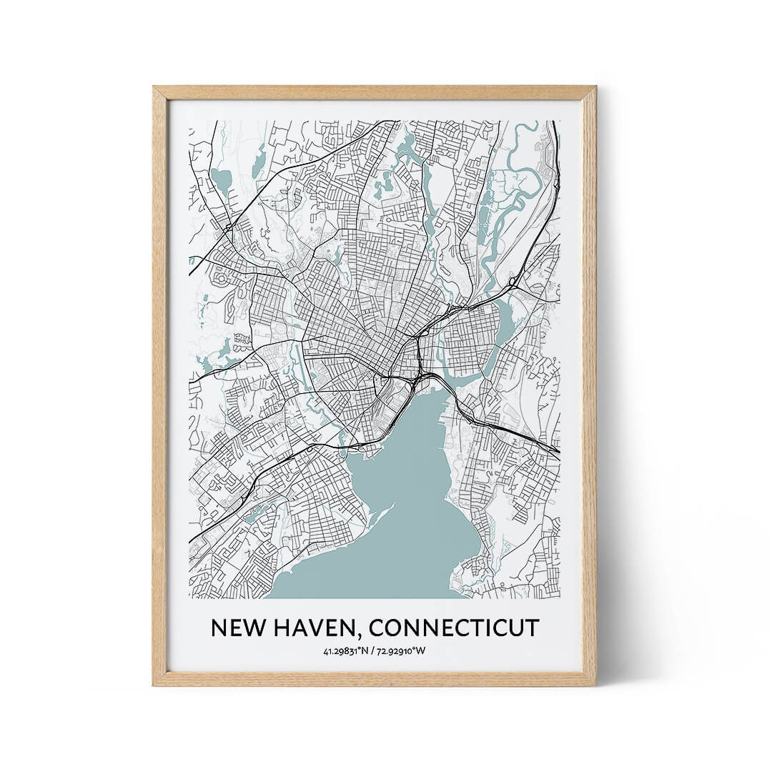 New Haven city map poster