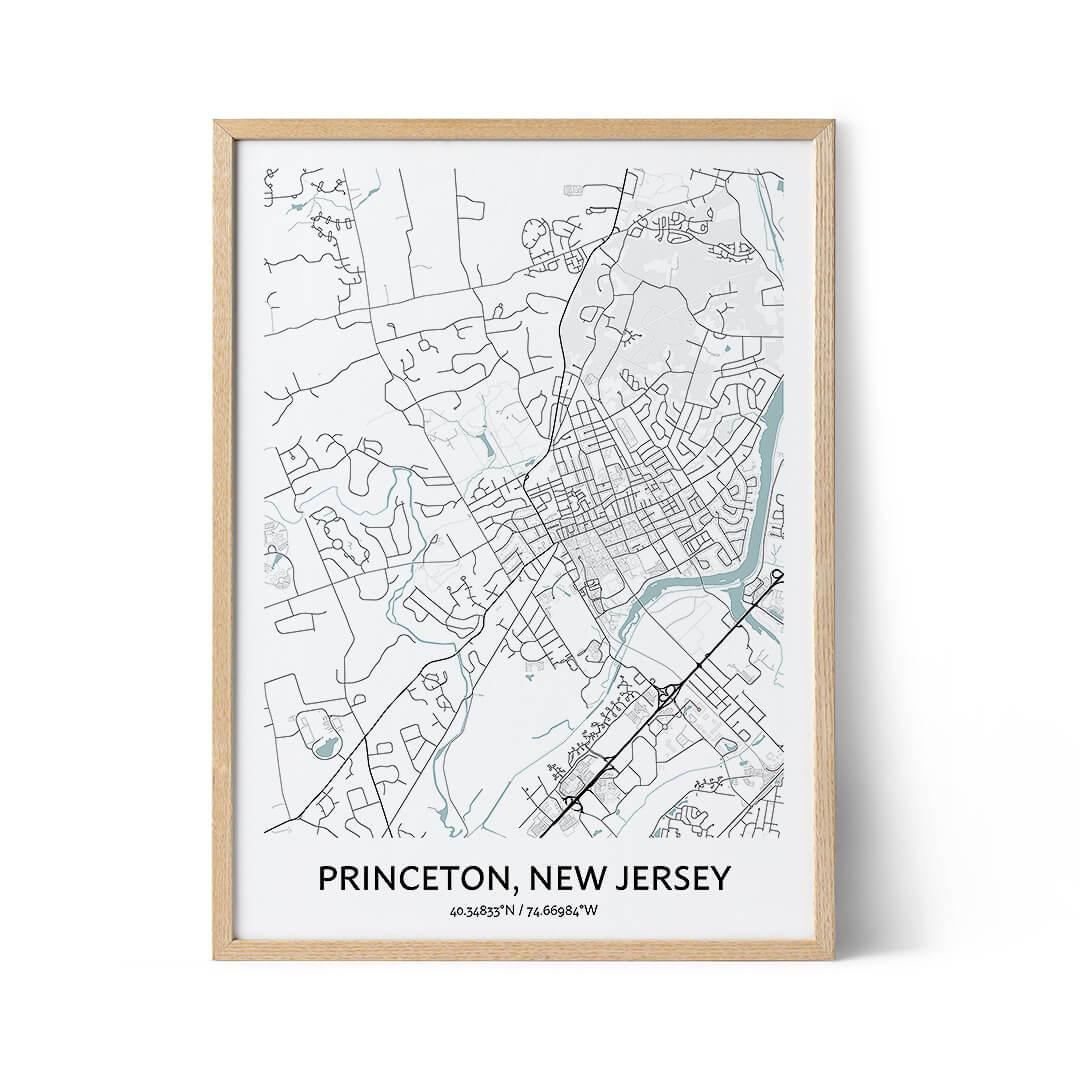 Princeton city map poster
