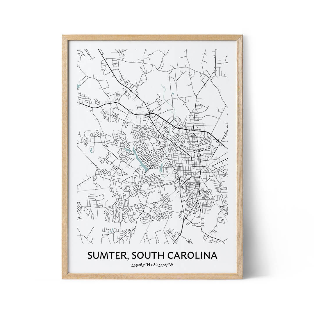 Sumter city map poster