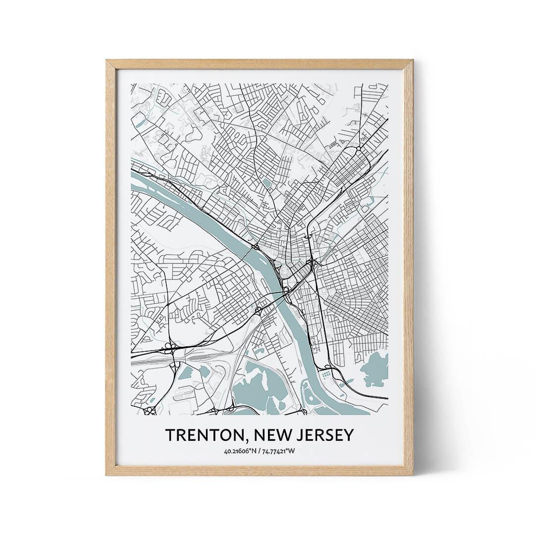 Trenton city map poster