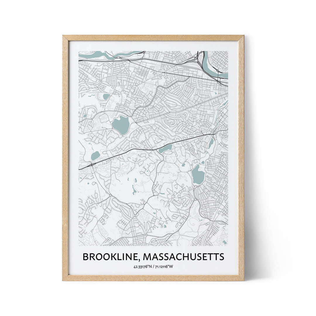 Brookline city map poster