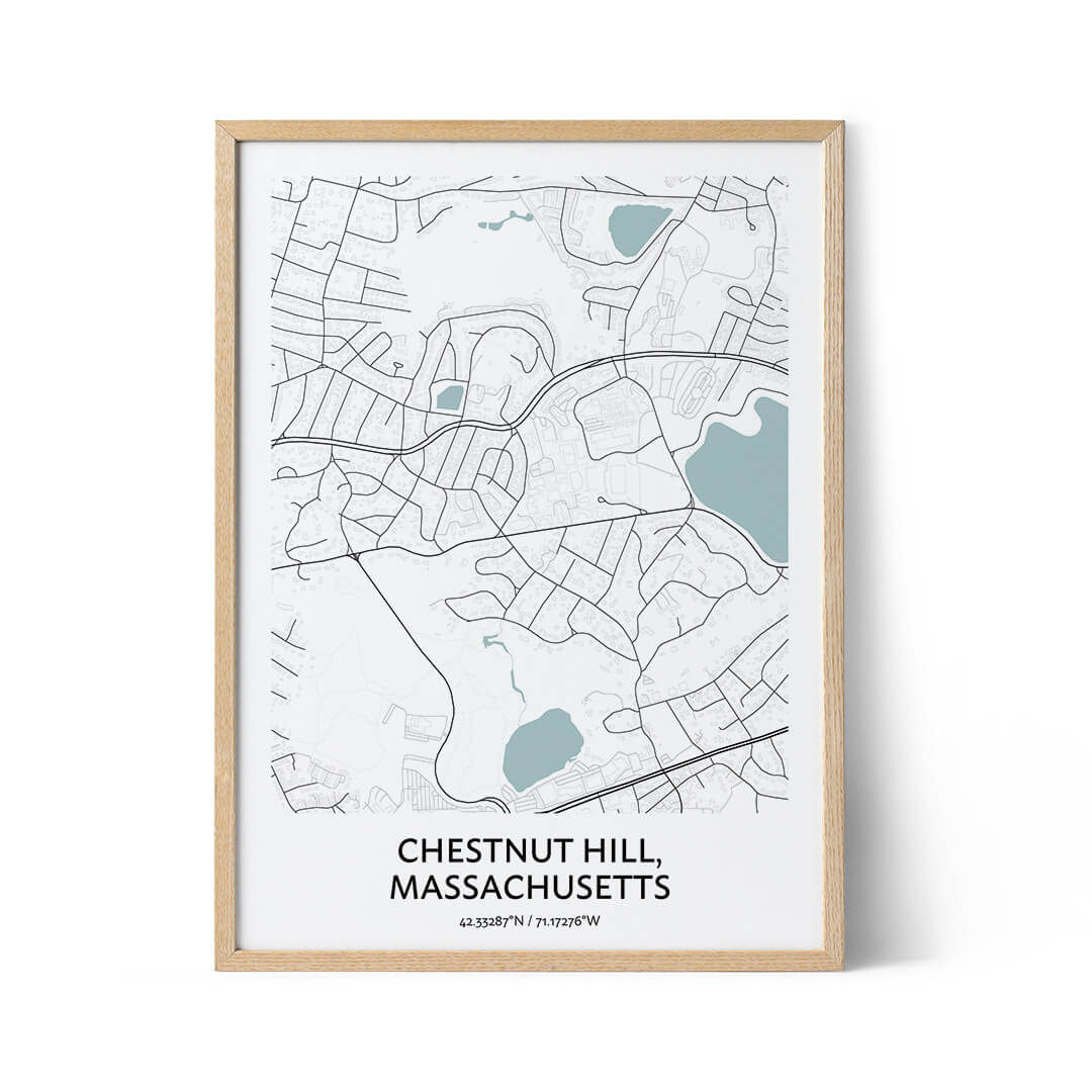 Chestnut Hill city map poster
