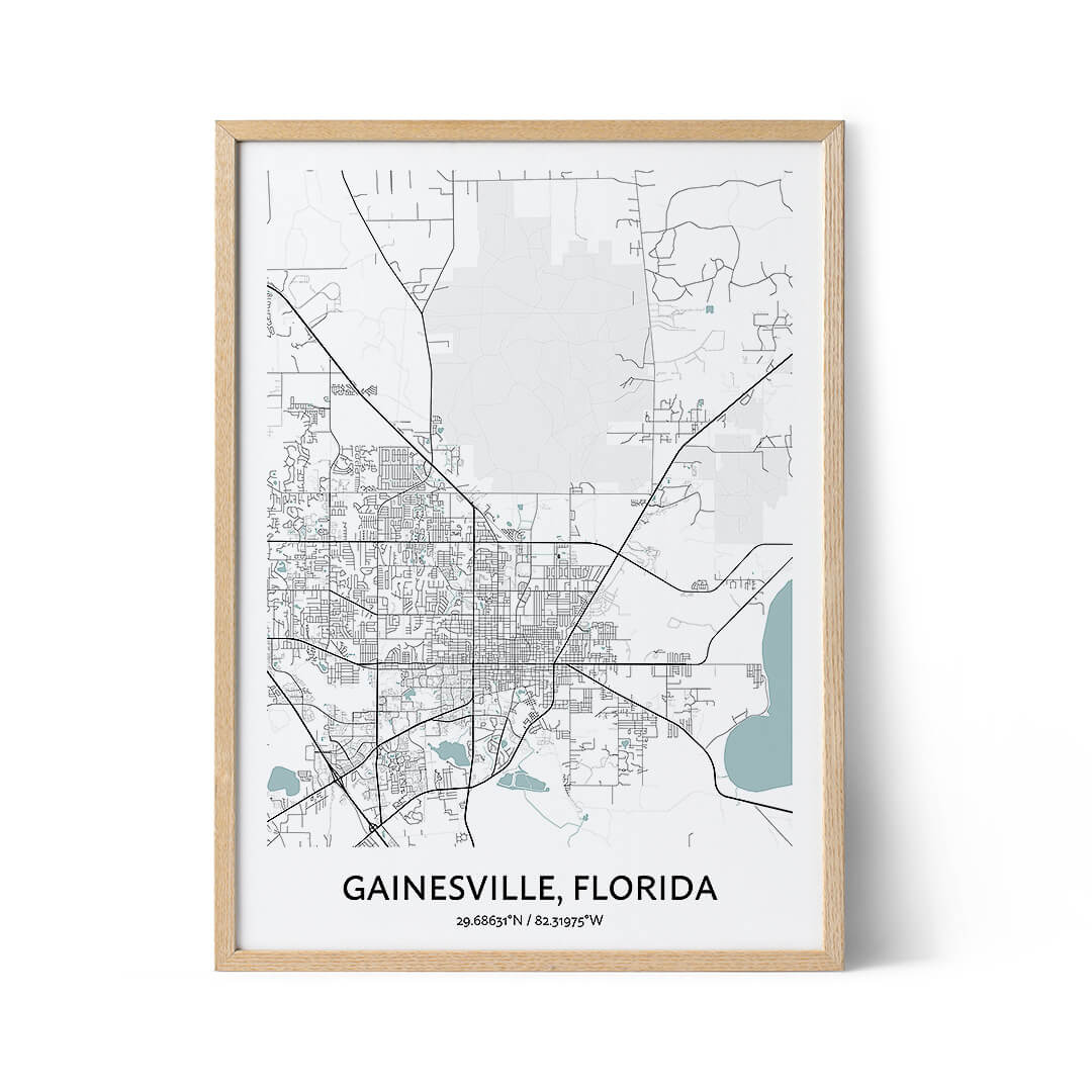 Gainesville city map poster