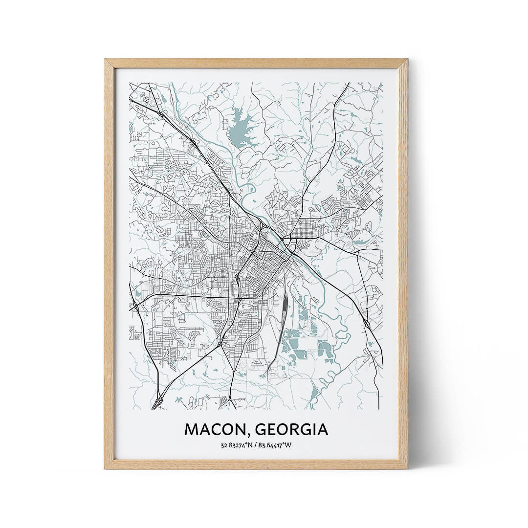Macon city map poster