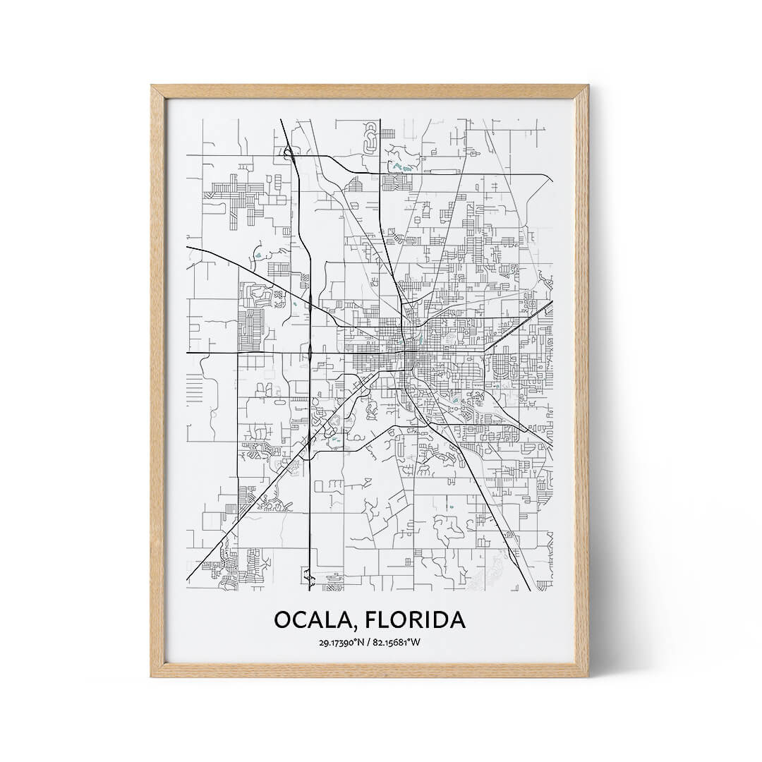 Ocala city map poster