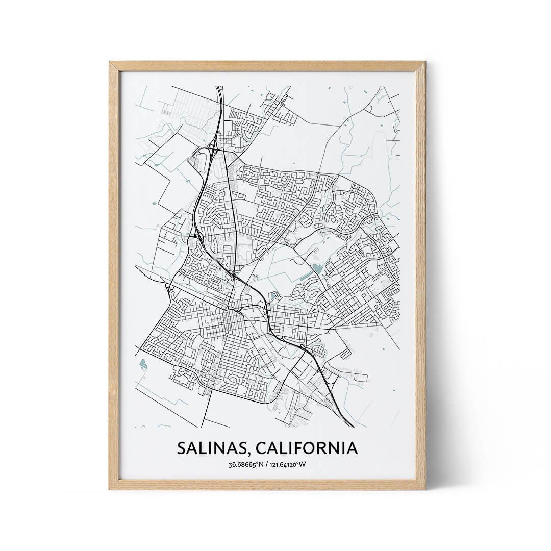 Salinas city map poster