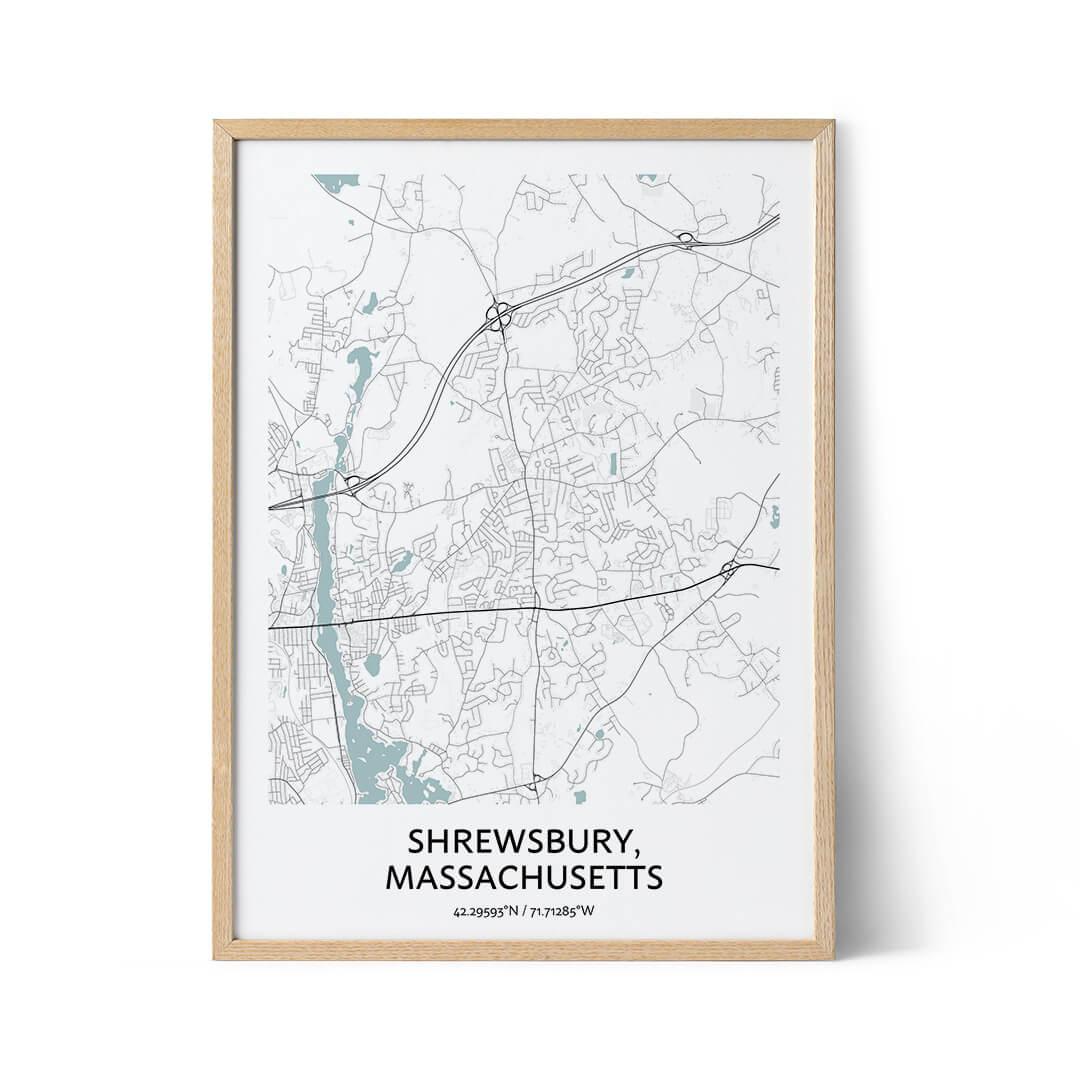 Shrewsbury city map poster