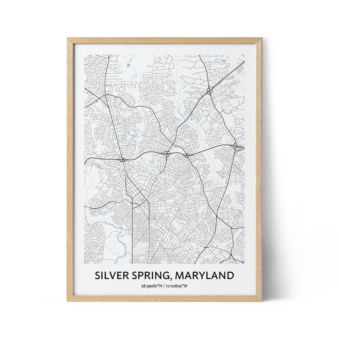 Silver Spring city map poster